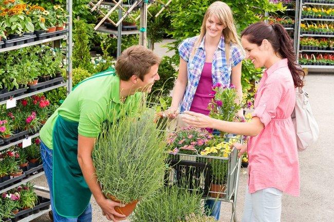 les Nouvelles Technologies au service du jardinage, loisir numéro 2 des Français